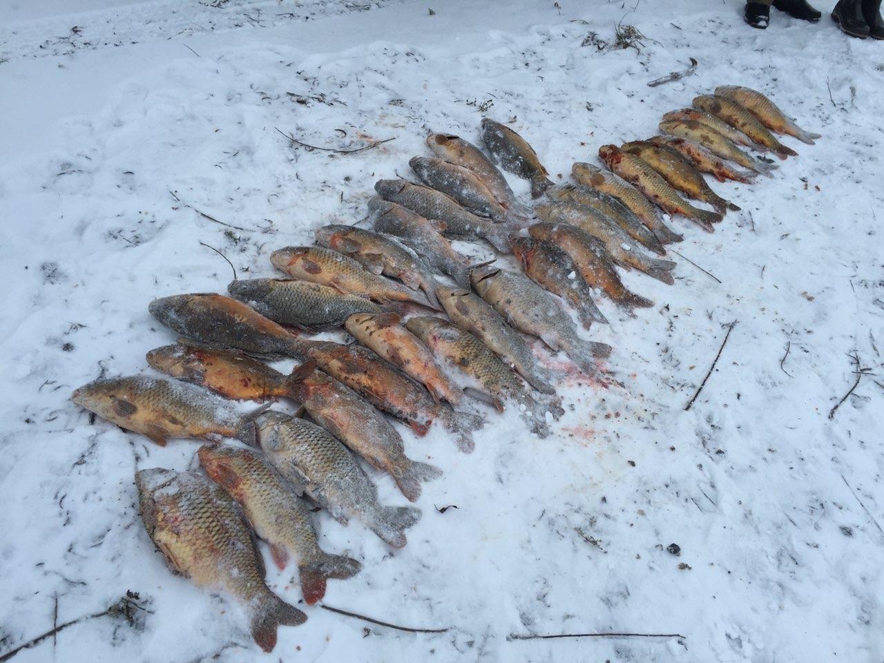 рыбалка в лукино красноярск